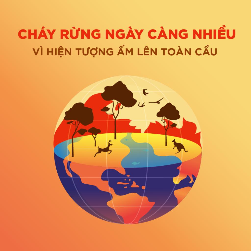 nguyen-nhan-xay-ra-hien-tuong-chay-rung
